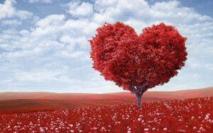 Seminarfestival Liebe - Liebe leben – Leben lieben